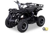 Kinder Elektro Miniquad Torino 800 Watt (Schwarz) -