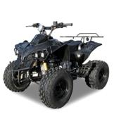 Kinder Quad benzin S-10 125 cc Motor Miniquad 125 ccm schwarz Warriorer -