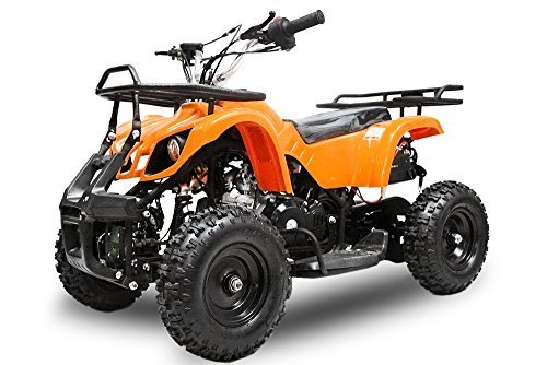 miniquad 50cc torino 4 takter e start kinderquad quad atv. Black Bedroom Furniture Sets. Home Design Ideas