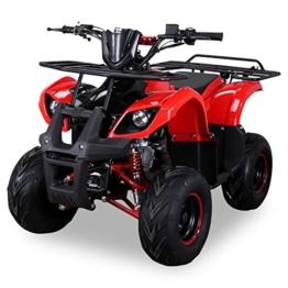 Kinder Quad S-8 Farmer 125 cc Motor Toronto